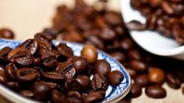 커피로스터1